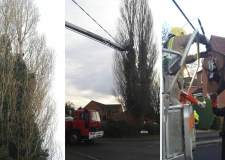 Firefigthers used a hydraulic platform to rescue the black cat from a 40ft tree in Lincoln. Photos: Natalie Davison