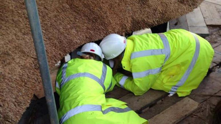 The Lincoln team will repair and protect the ornamental Swiss Cottage at the centre of the garden.