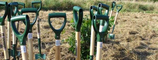 Lincolnshire-planting