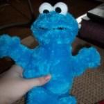 Cookie Monster Stuffed Animal