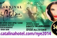 New Years Eve 2014 Miami The Catalina Hotel Miami Beach