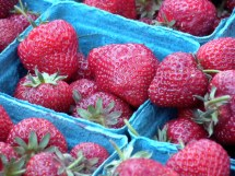 Honeoye Early Season Oregon Strawberries