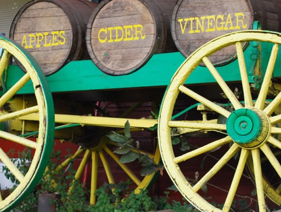 Apples Cider Vinegar Barrel Apple Cider Primer