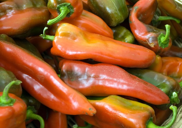 Italian Sweet Peppers at Portland Farmers Market