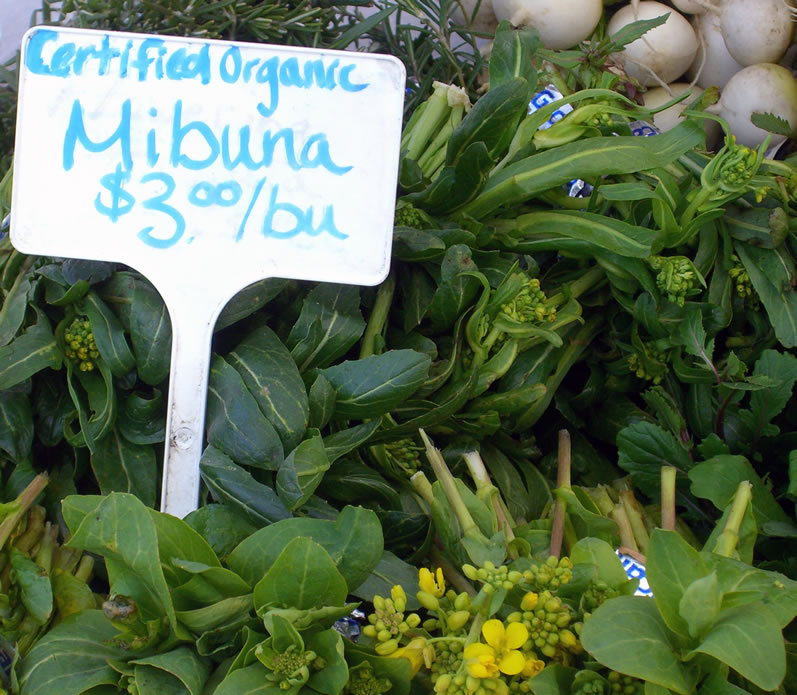 Mibuna at University District Farmers Market in April