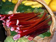 Rhubarb in a Basket at the Farmers Market