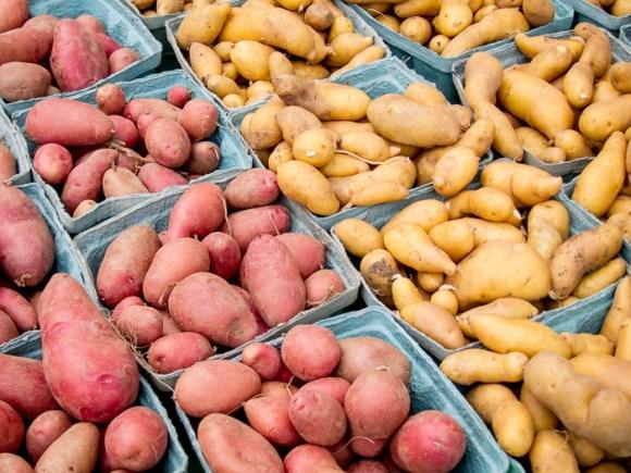 Portland Farmers Market Opening Day 2014: Fingerling Potatoes