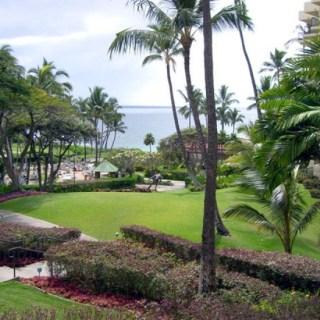 Maui Sweet