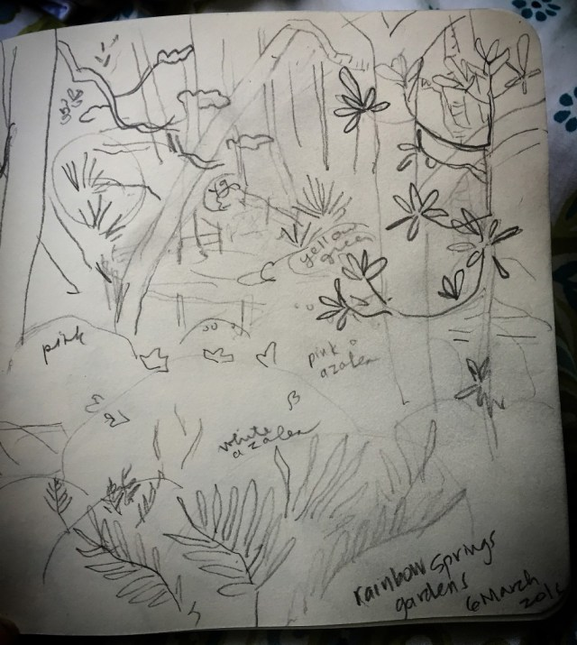 Rainbow River Gardens Sketch