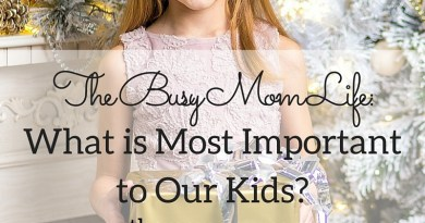The Busy Mom Life-