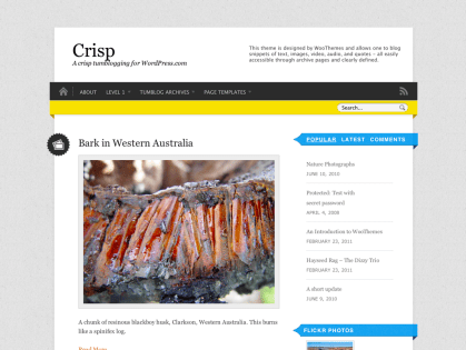 Crisp WordPress Theme