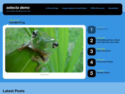 Selecta WordPress Theme