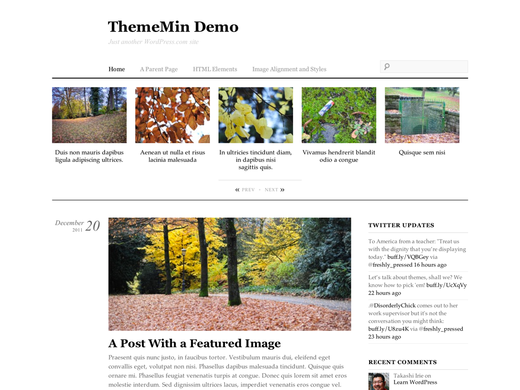 ThemeMin WordPress Theme