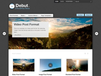 Debut WordPress Theme