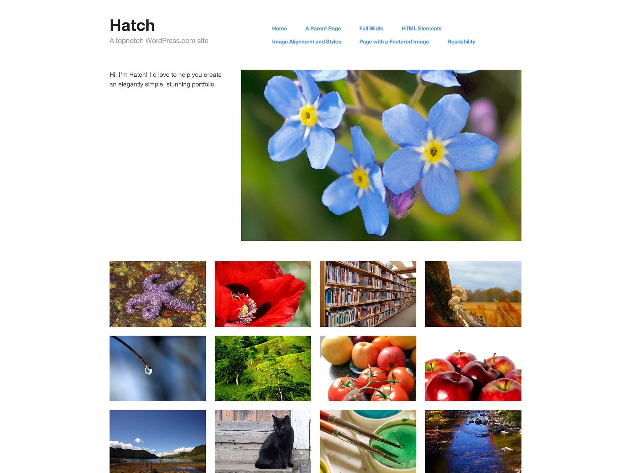 Hatch WordPress Theme