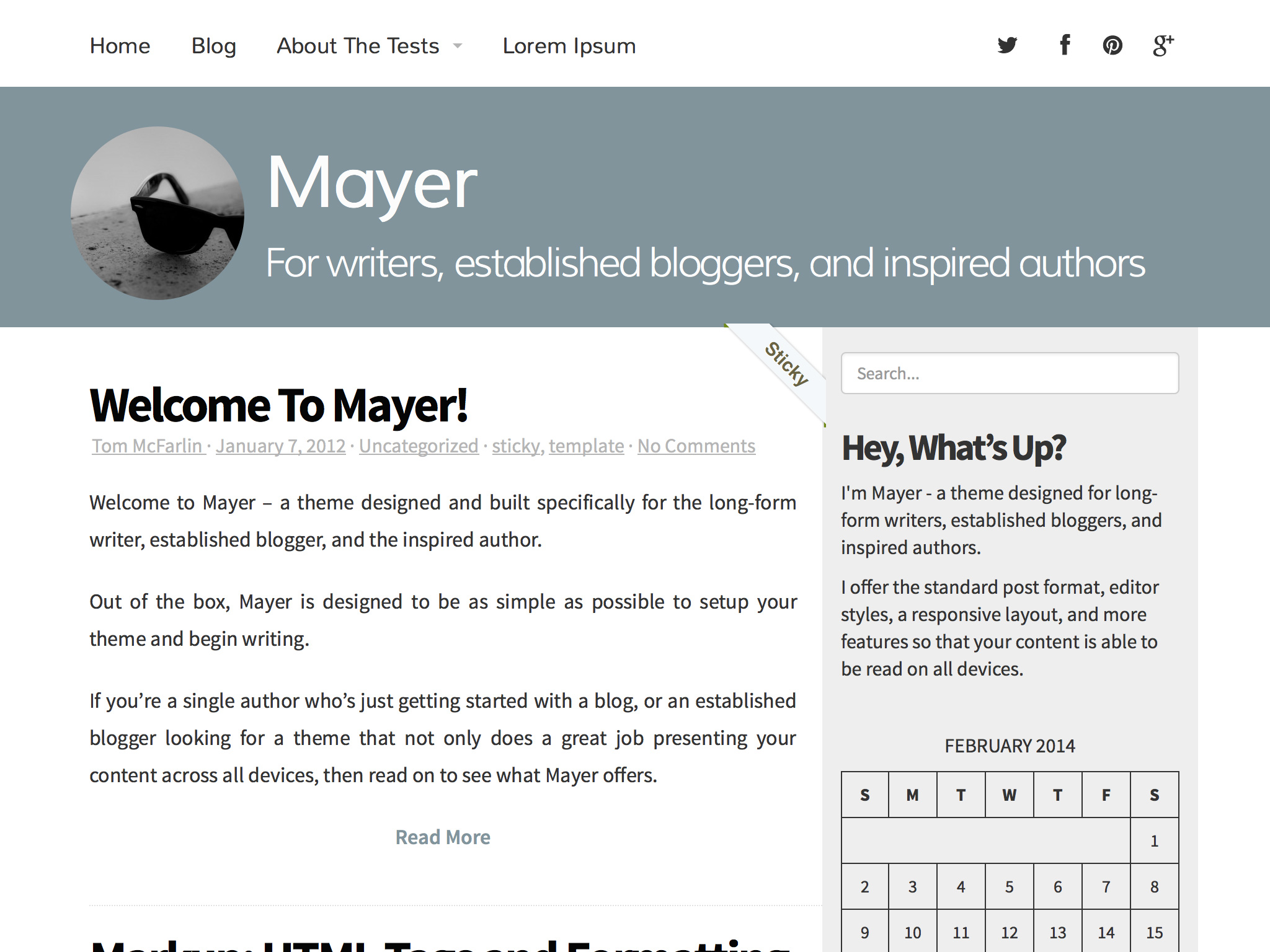 Mayer WordPress Theme