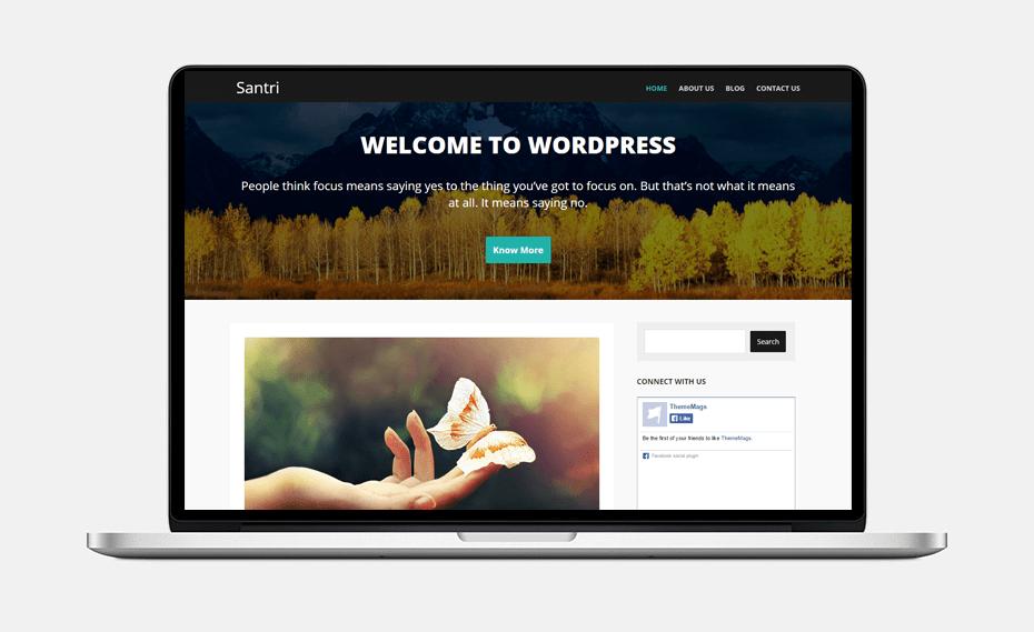 santri-wordpress-theme