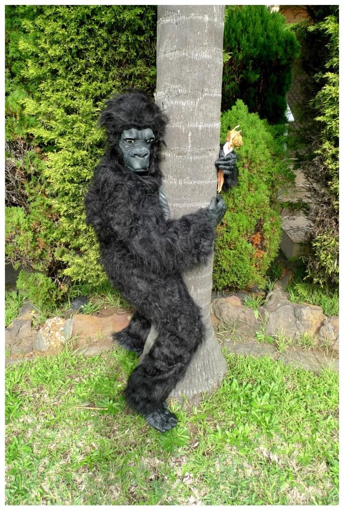 Day 348: King Kong