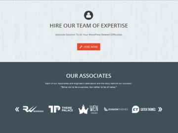 WEN Logo Slider Pro Screenshot