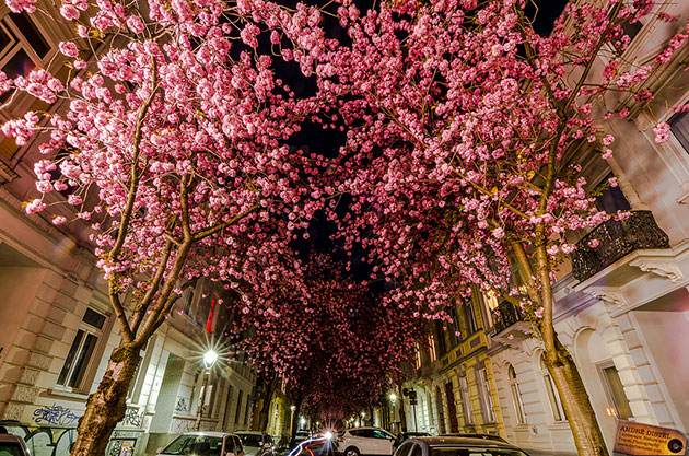 Street-Bonn-Germany