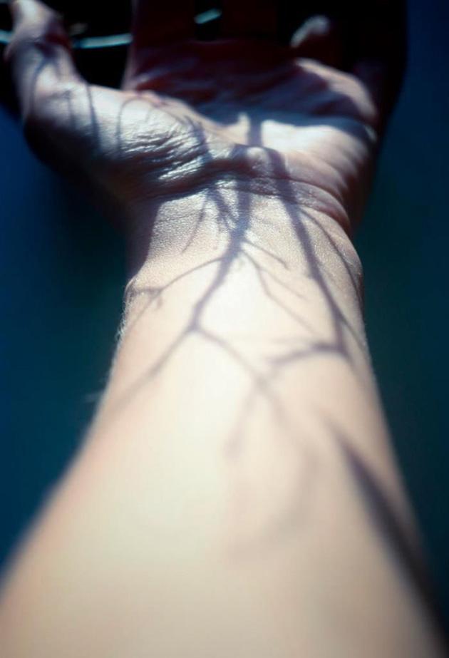 creative-hard-shadow-photography