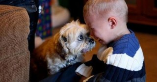 25 photos which show why every child should have a pet