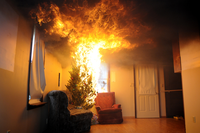 Prevent Your Christmas Tree From Causing a Home Fire