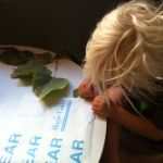 Playing:  Leaf Books (OMG – Did S Get Crafty??)