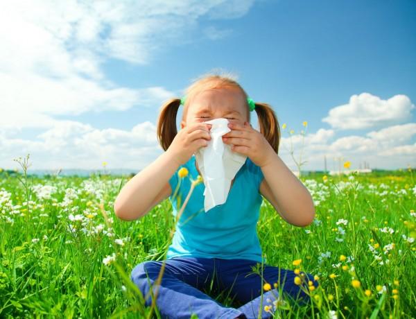 20150321 spring allergies
