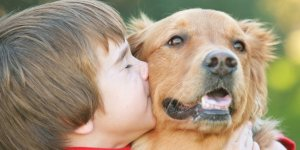 5 ways to teach compassion towards animals