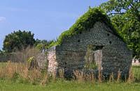 Sapelo Island Ruin