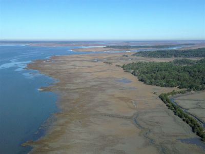 Coastal Georgia Island Marsh Aerial