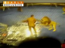 This video starts following an initial attack on Ukrainian lion tamer Oleksie Pinko as he tries to keep the lion at bay with a steel rod. When he gets too close the lion snaps, lunging at Oleksie, biting down on the trainer's left arm, as another lion joins in. Circus workers quickly attempted to hose down the angry lions, separating them from their prey. The crowd screams in terror.