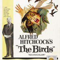 Book vs. Film: The Birds
