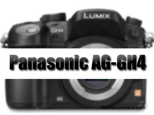 Panasonic-AG-GH4-Image-1