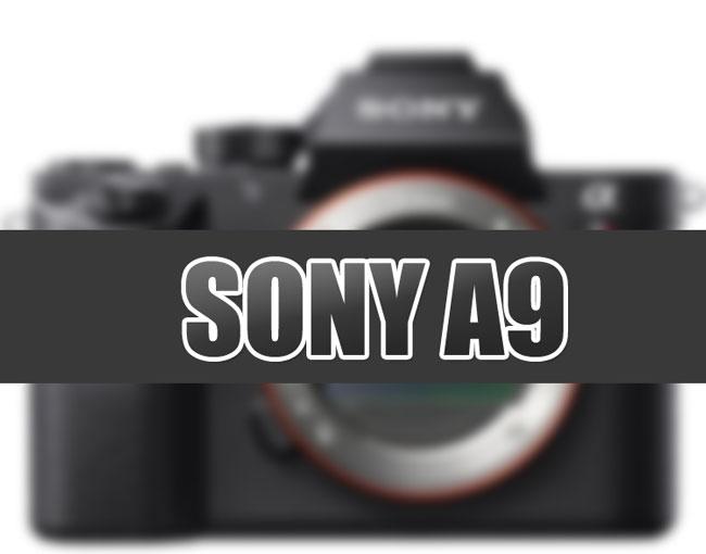 Sony-A9-image