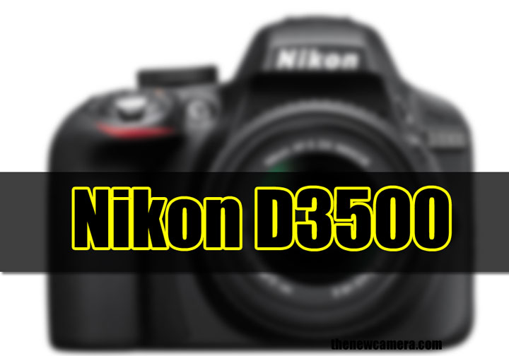 Nikon D3500 camera image