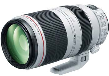 Canon 100-400 lens image
