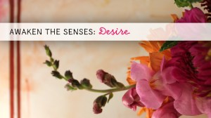 Awaken the Senses ~ Desire