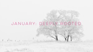 Sensory Weekend: Deeply Rooted