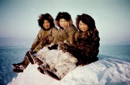 omega-3-inuit-siet