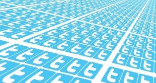 Many Twitter logos