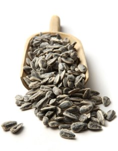 are sunflower seeds paleo
