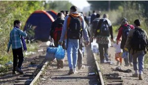 Refugess Of Europe
