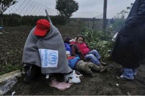 UN Refugees15
