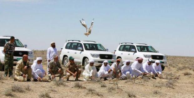 arabs-hunting-houbara-bustrad-in-pakistan