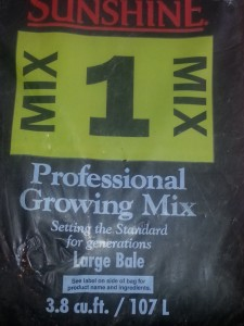 Sunshine Pro-Mix is my preferred potting soil.