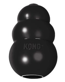 Kong Extreme Dog Toy for pit bulls