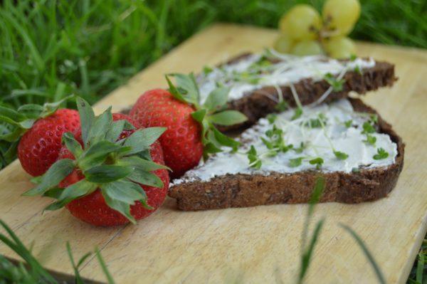 vegan_cheese_sandwich_strawberry