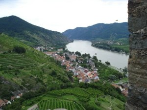 A view of Spitz town and the surrounding vineyards.